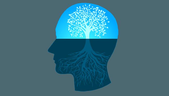 enhancing your entrepreneurial mindset