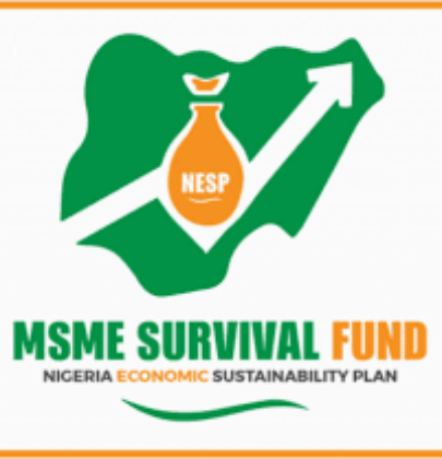 FG MSME SURVIVAL FUNDS PROGRAM NOW ACCESSIBLE